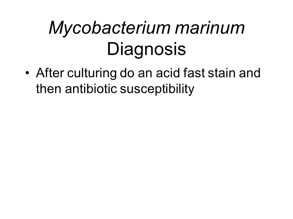 Mycobacterium marinum Diagnosis After culturing do an acid fast stain and then antibiotic susceptibility