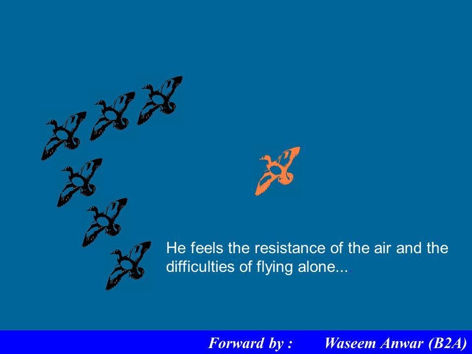 When a goose leaves the formation.. Forward by : Waseem Anwar (B2A)