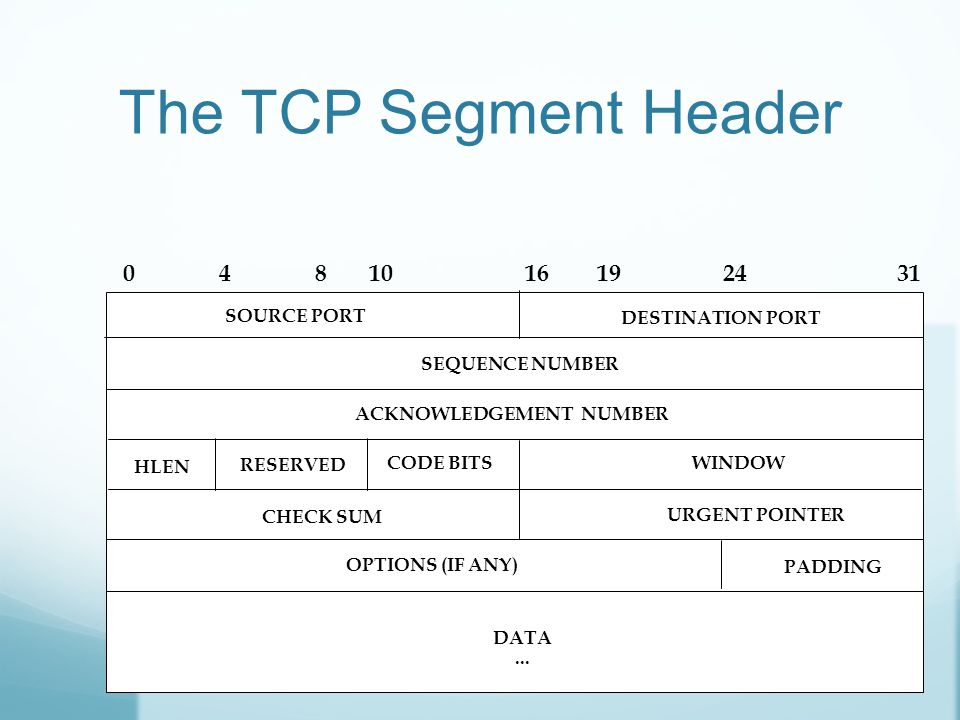 The TCP Segment Header SOURCE PORT DESTINATION PORT SEQUENCE NUMBER ACKNOWLEDGEMENT NUMBER RESERVED CODE BITSWINDOW URGENT POINTER DATA...