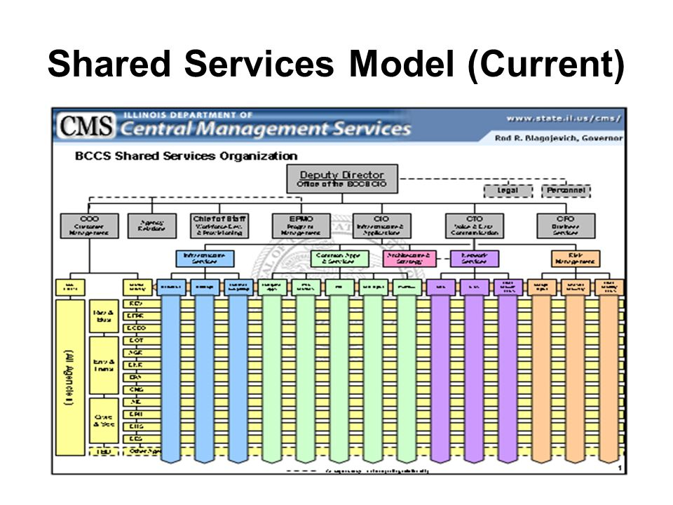 Shared Services Model (Current)