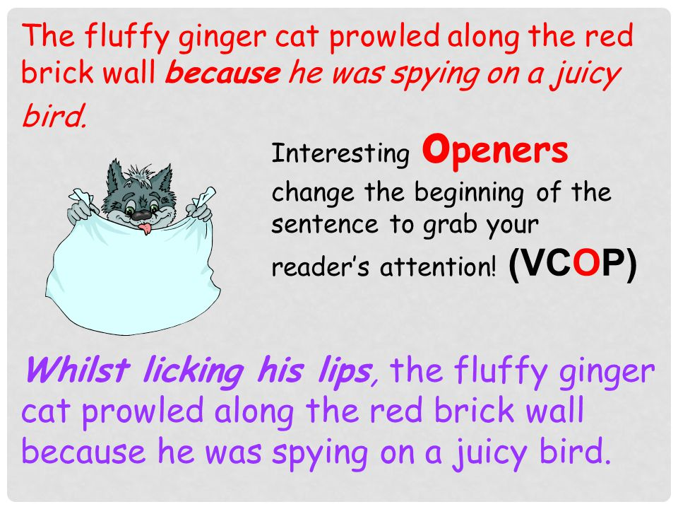 The fluffy ginger cat prowled along the red brick wall.