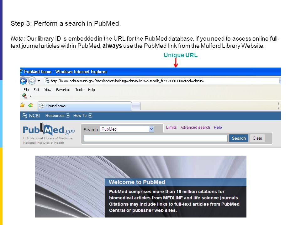 Step 3: Perform a search in PubMed.