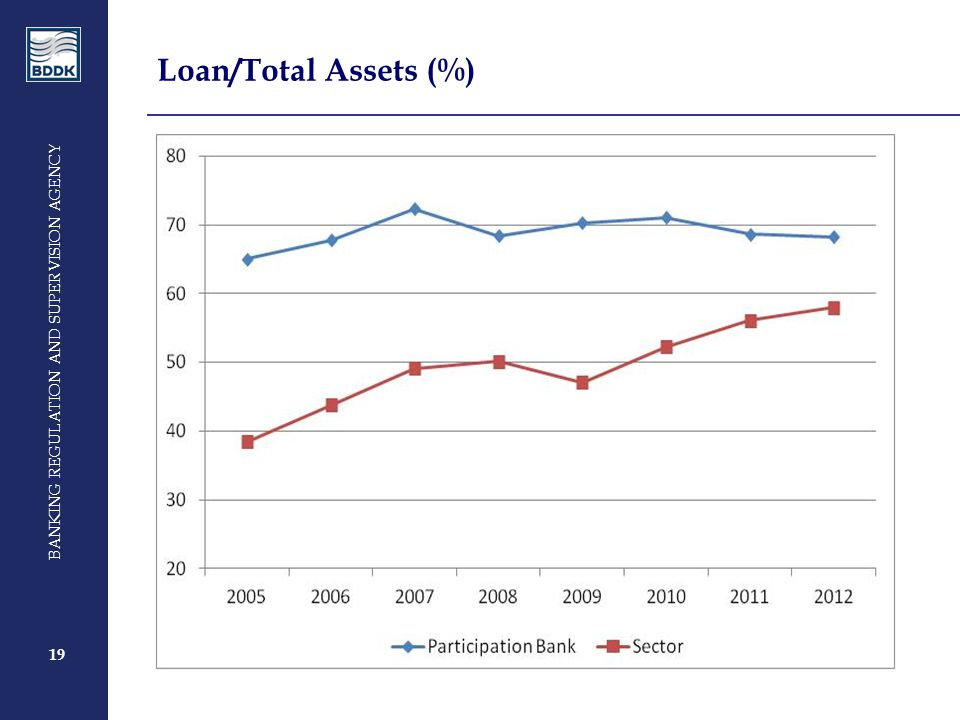 19 BANKING REGULATION AND SUPERVISION AGENCY 19 Loan/Total Assets (%)
