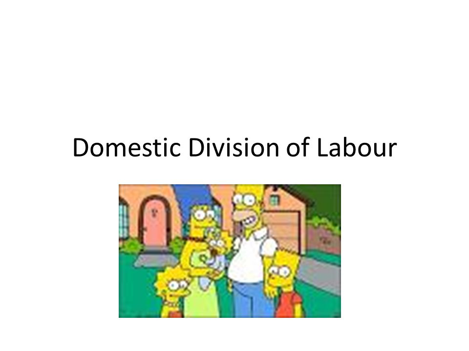Domestic Division of Labour