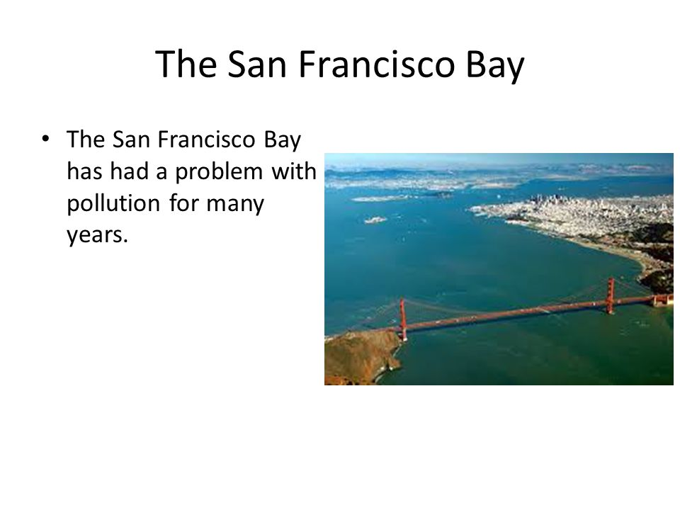 The San Francisco Bay The San Francisco Bay has had a problem with pollution for many years.
