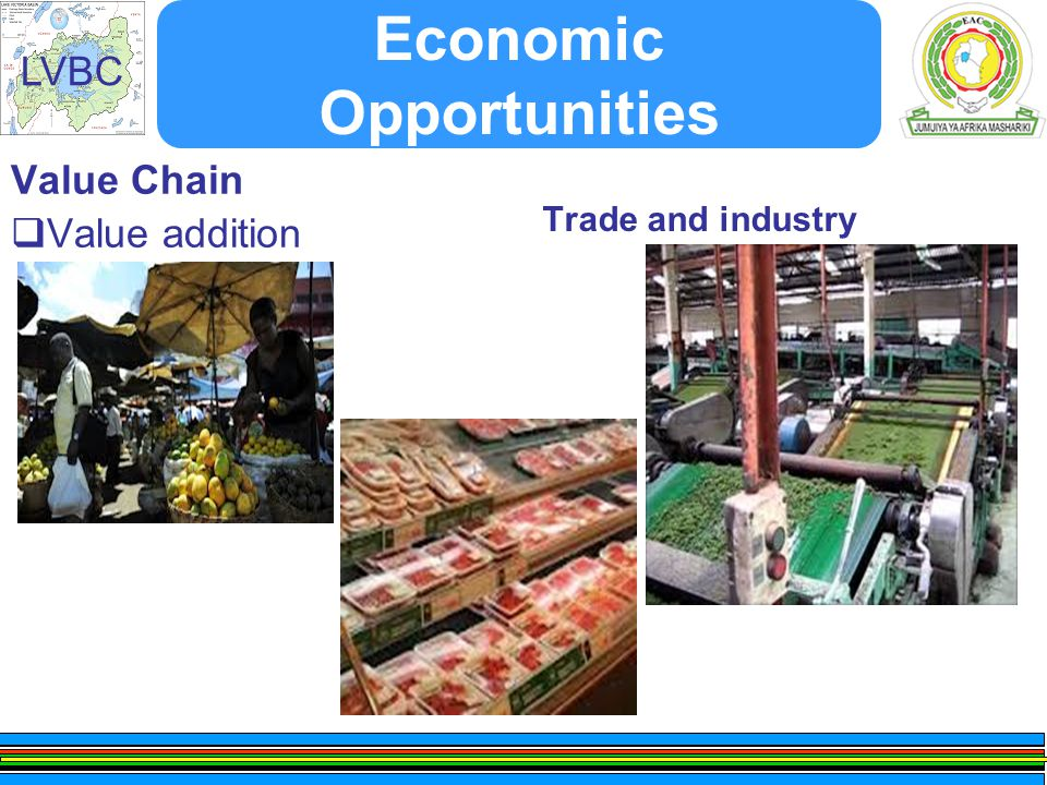 LVBC Economic Opportunities Value Chain  Value addition Trade and industry