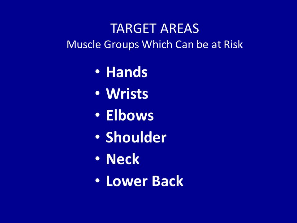 TARGET AREAS Muscle Groups Which Can be at Risk Hands Wrists Elbows Shoulder Neck Lower Back