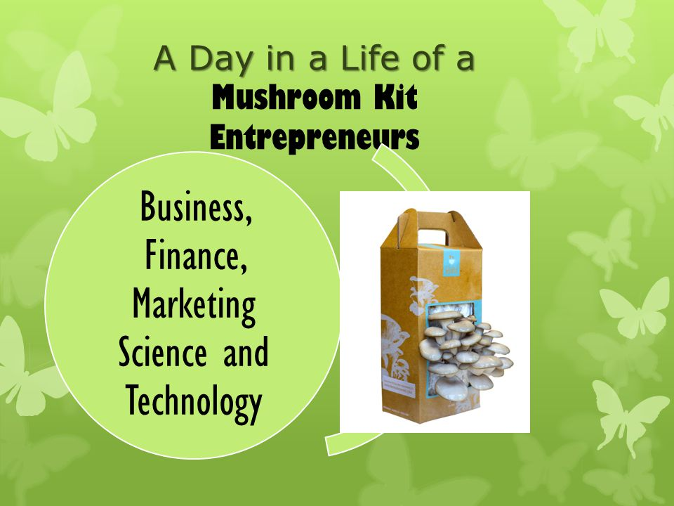 A Day in a Life of a A Day in a Life of a Mushroom Kit Entrepreneurs Business, Finance, Marketing Science and Technology