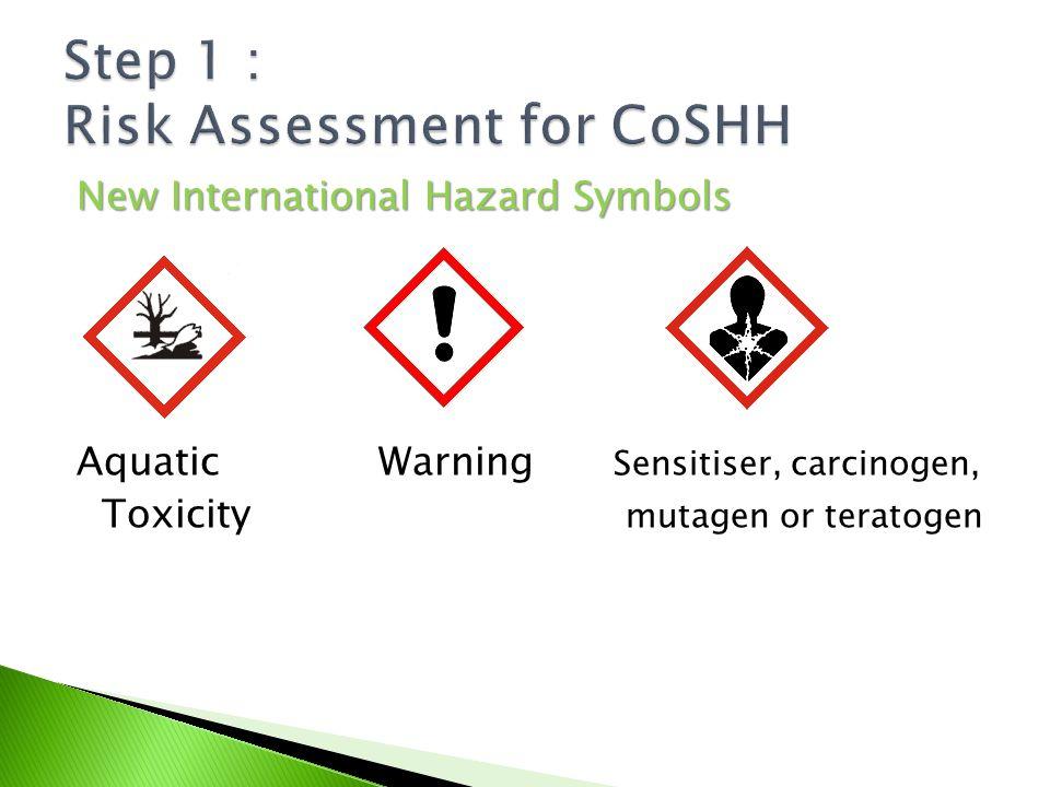 Control Of Substances Hazardous To Health Regulations2004 Ppt