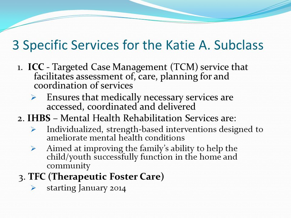 3 Specific Services for the Katie A. Subclass 1.