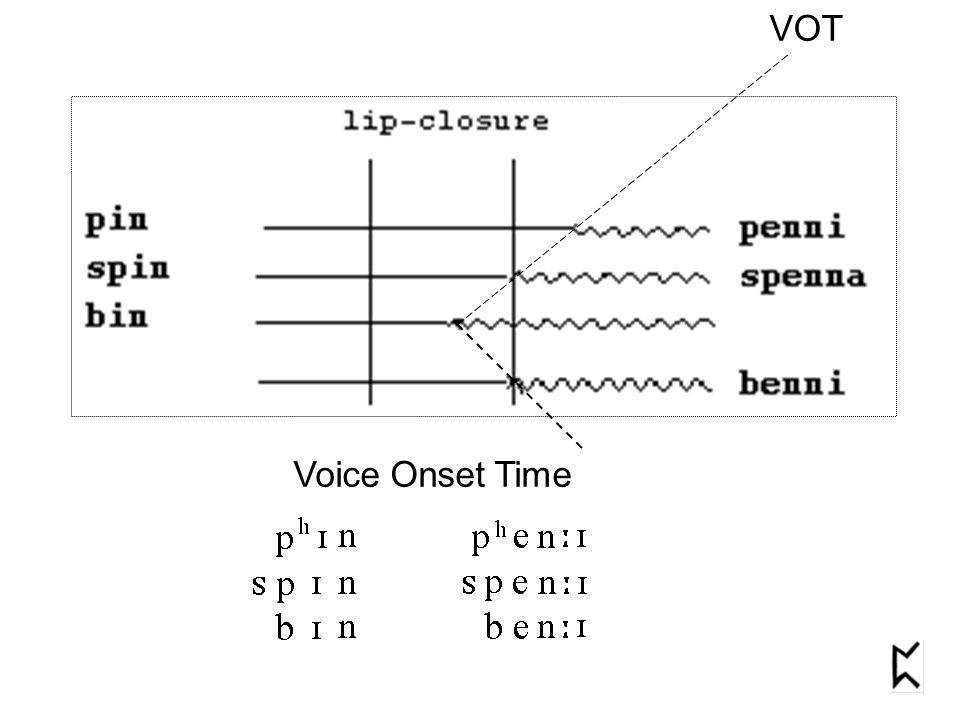 VOT Voice Onset Time