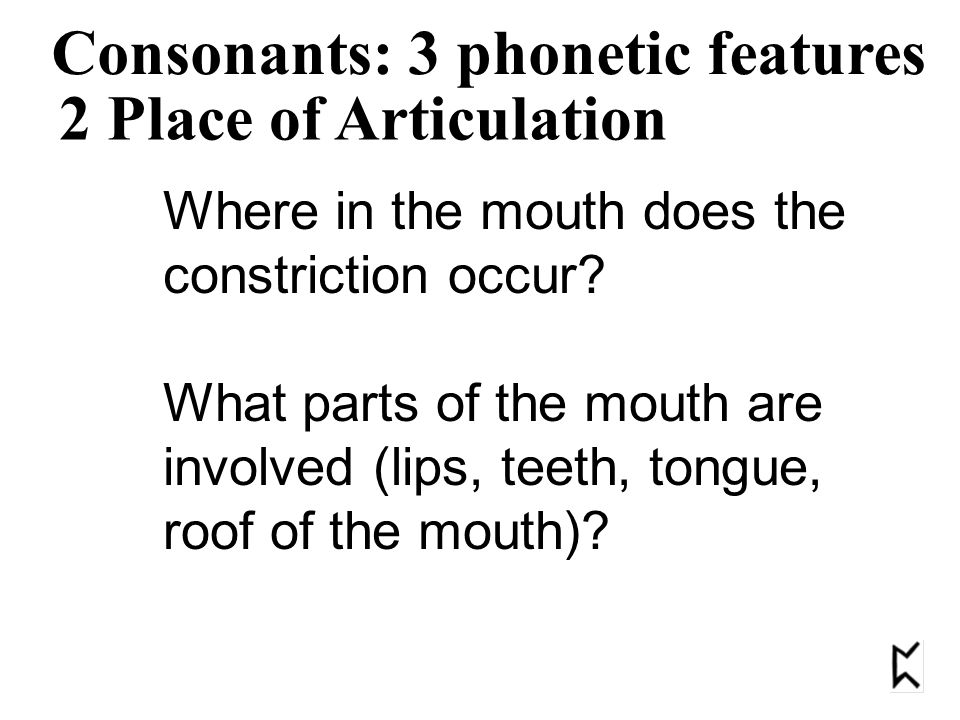 2 Place of Articulation Consonants: 3 phonetic features Where in the mouth does the constriction occur.