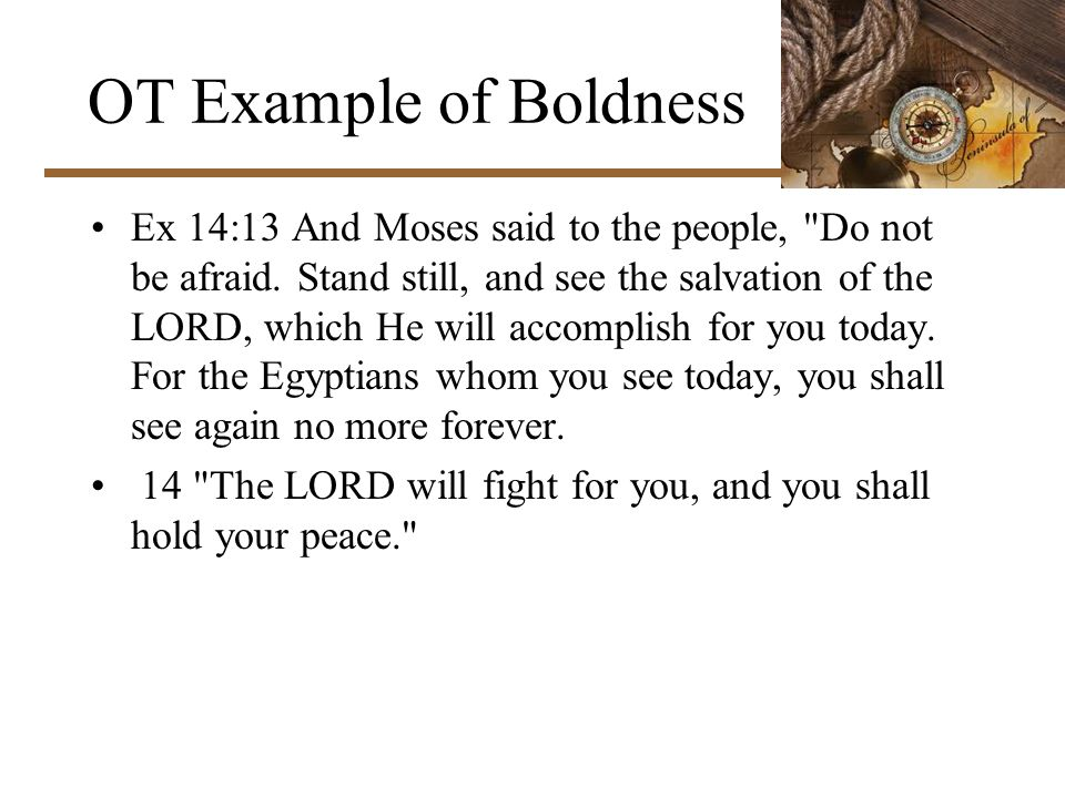 OT Example of Boldness Ex 14:13 And Moses said to the people, Do not be afraid.