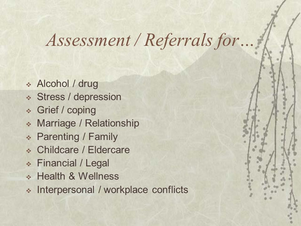 Assessment / Referrals for…  Alcohol / drug  Stress / depression  Grief / coping  Marriage / Relationship  Parenting / Family  Childcare / Eldercare  Financial / Legal  Health & Wellness  Interpersonal / workplace conflicts