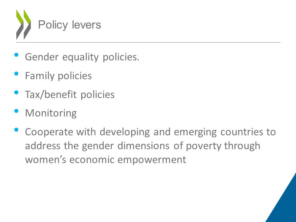 Policy levers Gender equality policies.