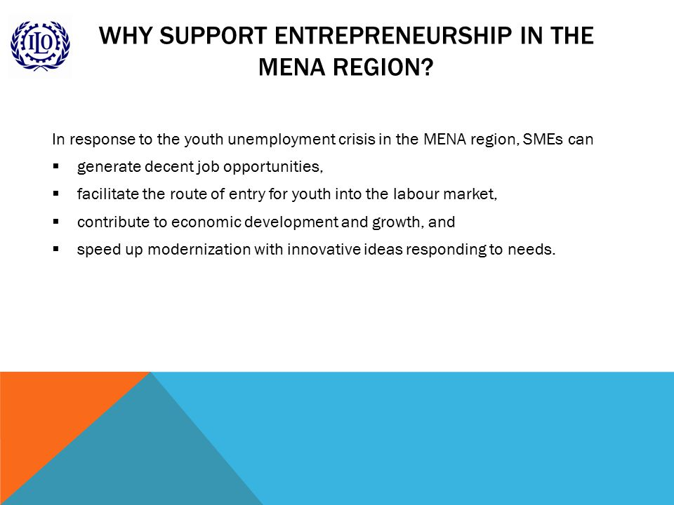 WHY SUPPORT ENTREPRENEURSHIP IN THE MENA REGION.