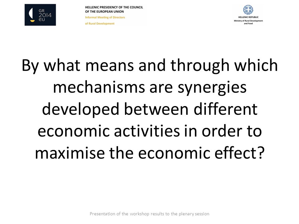 By what means and through which mechanisms are synergies developed between different economic activities in order to maximise the economic effect.