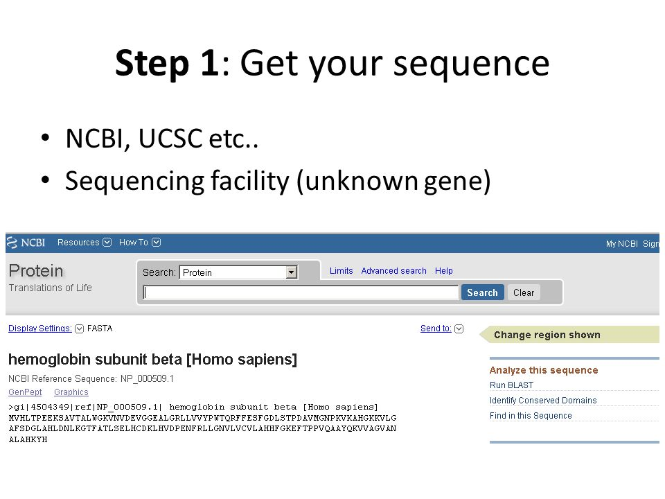 Step 1: Get your sequence NCBI, UCSC etc.. Sequencing facility (unknown gene)