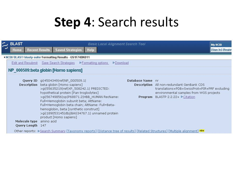 Step 4: Search results