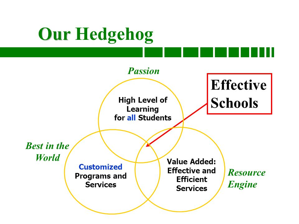 Good to great and the social sector fitting the pieces together 8 our our hedgehog effective schools high level of learning for all students passion customized programs and services best in the world value added fandeluxe Gallery