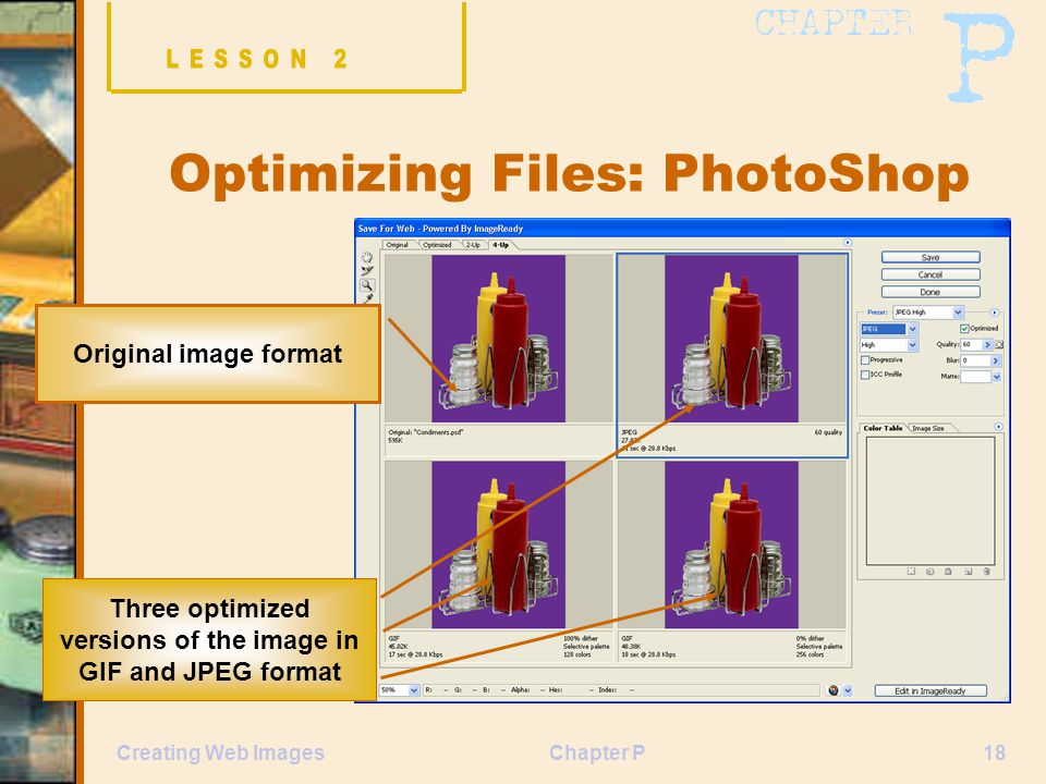 Chapter P18Creating Web Images Optimizing Files: PhotoShop Original image format Three optimized versions of the image in GIF and JPEG format