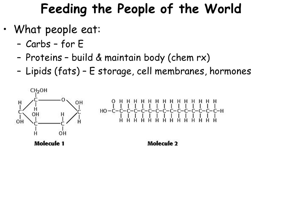 Feeding the People of the World What people eat: –Carbs – for E –Proteins – build & maintain body (chem rx) –Lipids (fats) – E storage, cell membranes, hormones