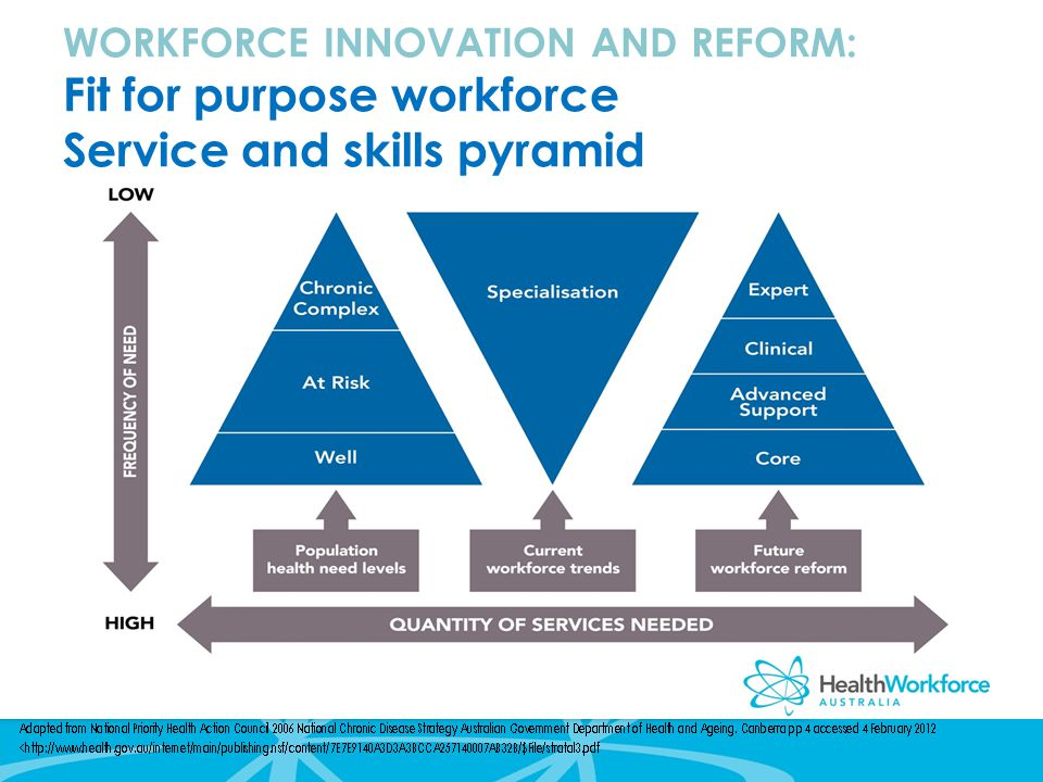 WORKFORCE INNOVATION AND REFORM: Fit for purpose workforce Service and skills pyramid