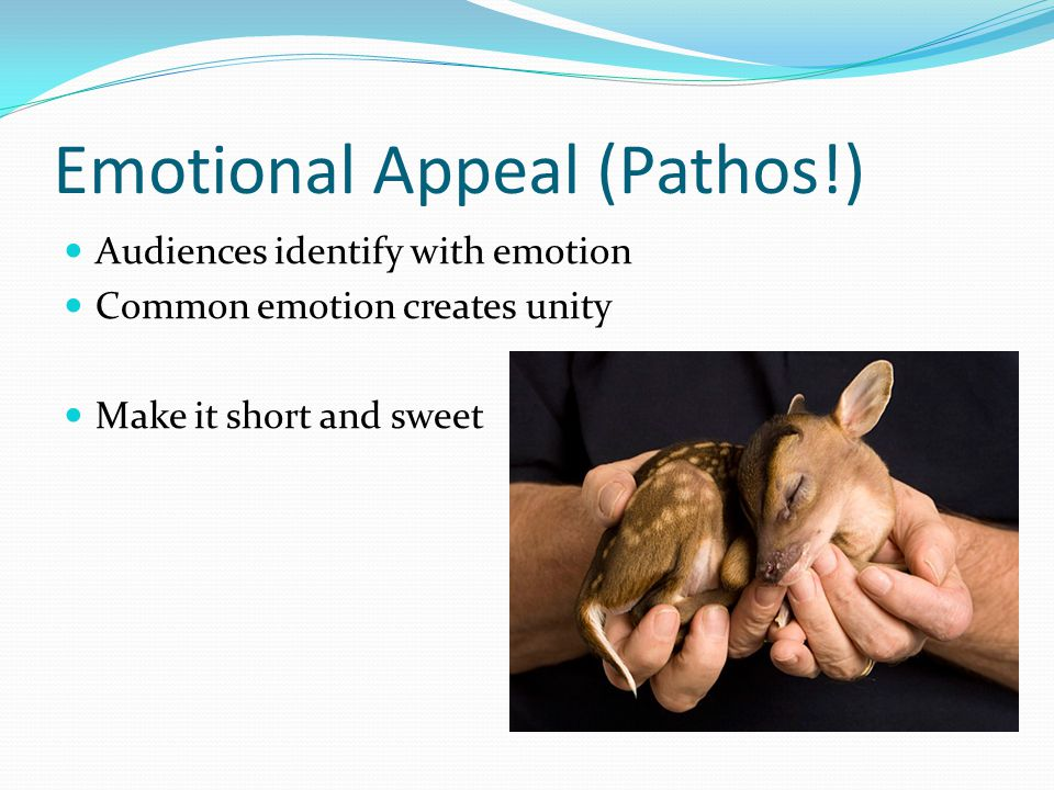 Emotional Appeal (Pathos!) Audiences identify with emotion Common emotion creates unity Make it short and sweet