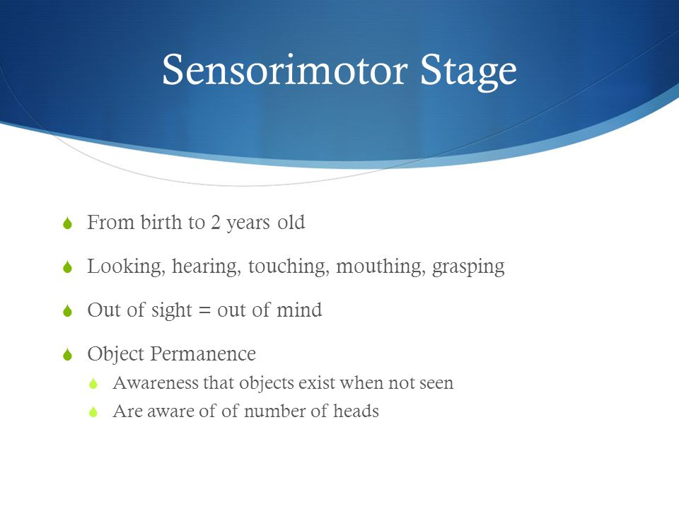 Sensorimotor Stage  From birth to 2 years old  Looking, hearing, touching, mouthing, grasping  Out of sight = out of mind  Object Permanence  Awareness that objects exist when not seen  Are aware of of number of heads