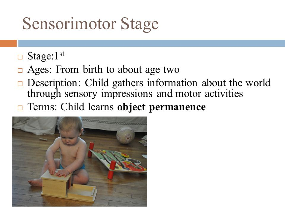 Sensorimotor Stage  Stage:1 st  Ages: From birth to about age two  Description: Child gathers information about the world through sensory impressions and motor activities  Terms: Child learns object permanence