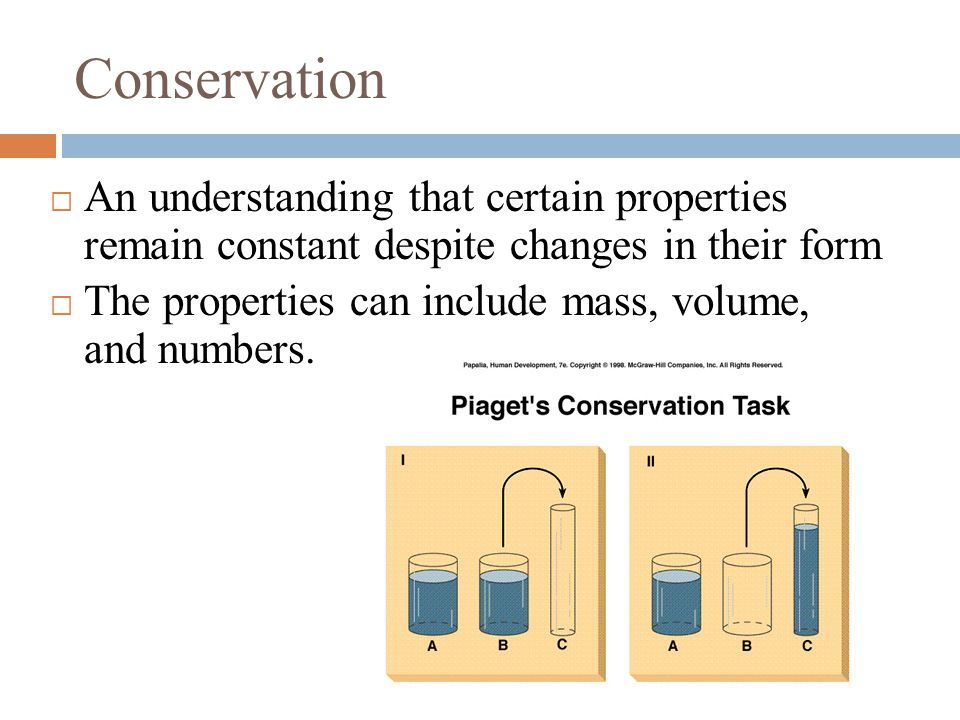 Conservation  An understanding that certain properties remain constant despite changes in their form  The properties can include mass, volume, and numbers.