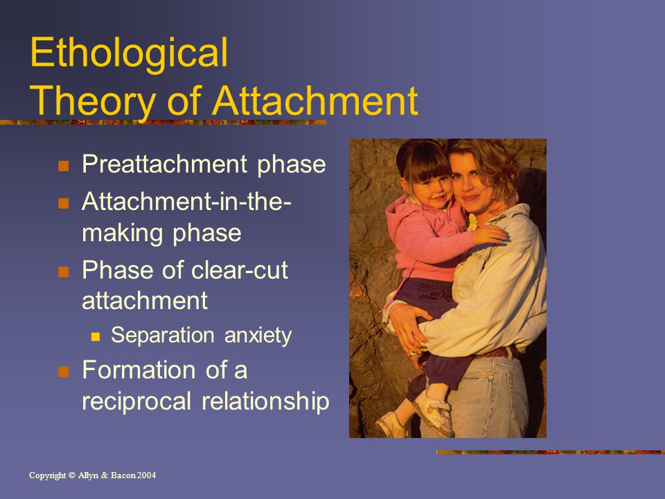 Copyright © Allyn & Bacon 2004 Ethological Theory of Attachment Preattachment phase Attachment-in-the- making phase Phase of clear-cut attachment Separation anxiety Formation of a reciprocal relationship
