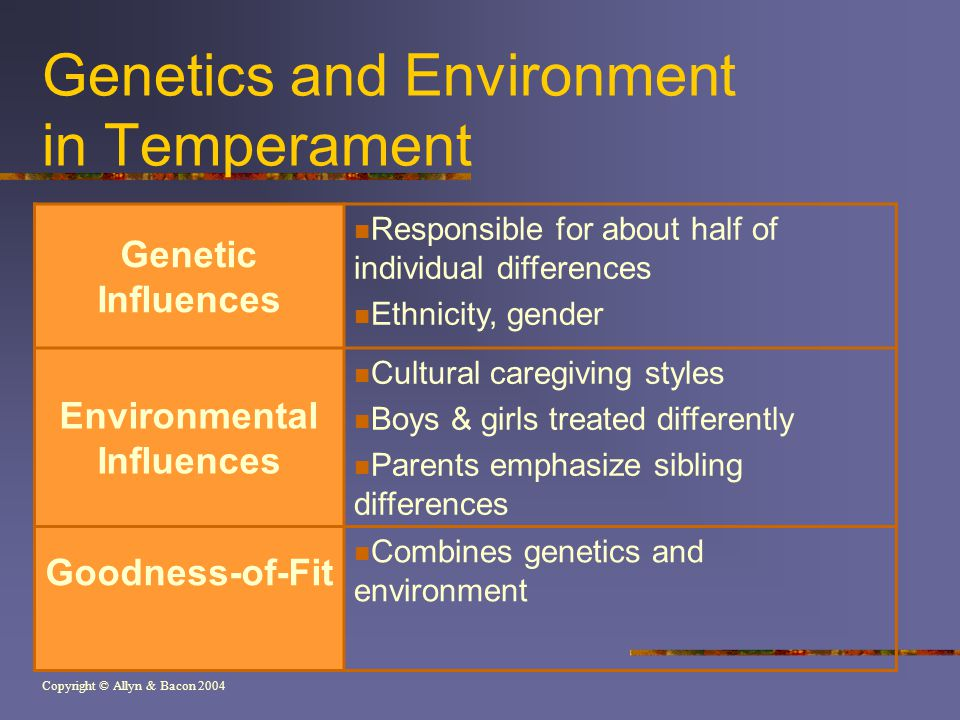 Copyright © Allyn & Bacon 2004 Genetics and Environment in Temperament Genetic Influences Responsible for about half of individual differences Ethnicity, gender Environmental Influences Cultural caregiving styles Boys & girls treated differently Parents emphasize sibling differences Goodness-of-Fit Combines genetics and environment