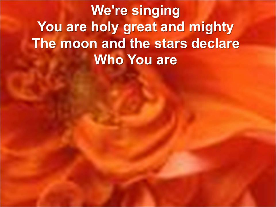 We re singing You are holy great and mighty The moon and the stars declare Who You are