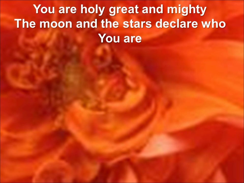 You are holy great and mighty The moon and the stars declare who You are