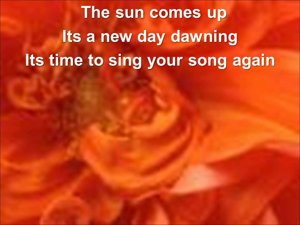 The sun comes up The sun comes up Its a new day dawning Its time to sing your song again
