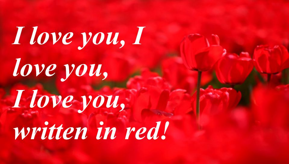 I love you, I love you, written in red!
