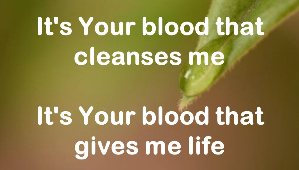 It s Your blood that cleanses me It s Your blood that gives me life