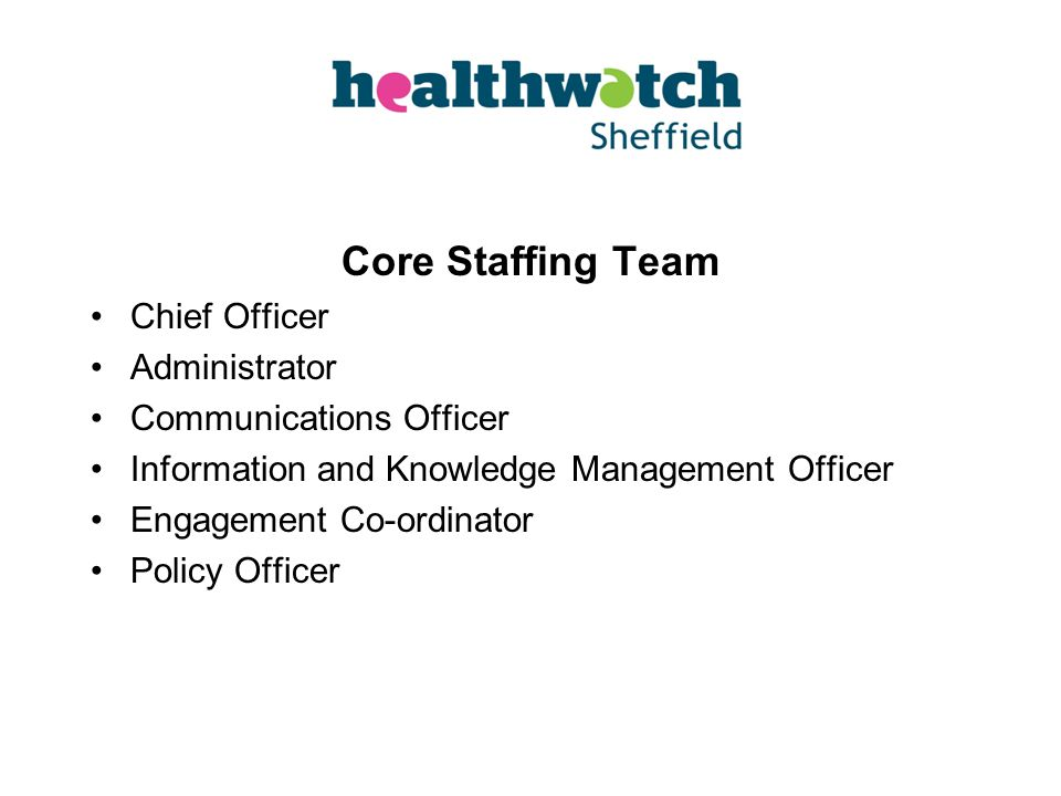 Core Staffing Team Chief Officer Administrator Communications Officer Information and Knowledge Management Officer Engagement Co-ordinator Policy Officer