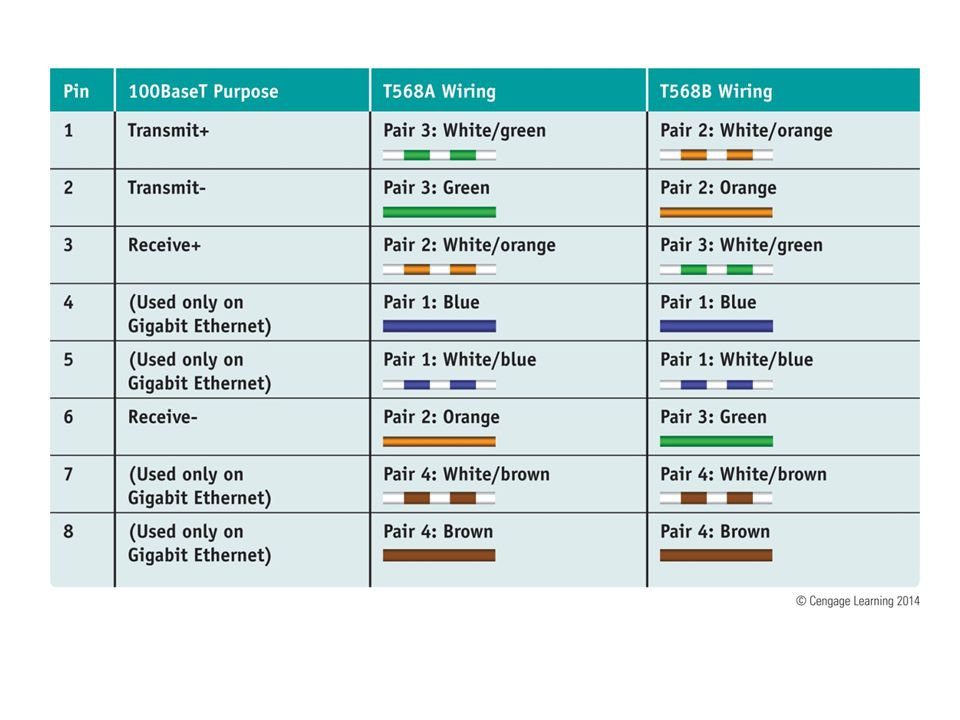 Networking Types, Devices, and Cabling - ppt video online download