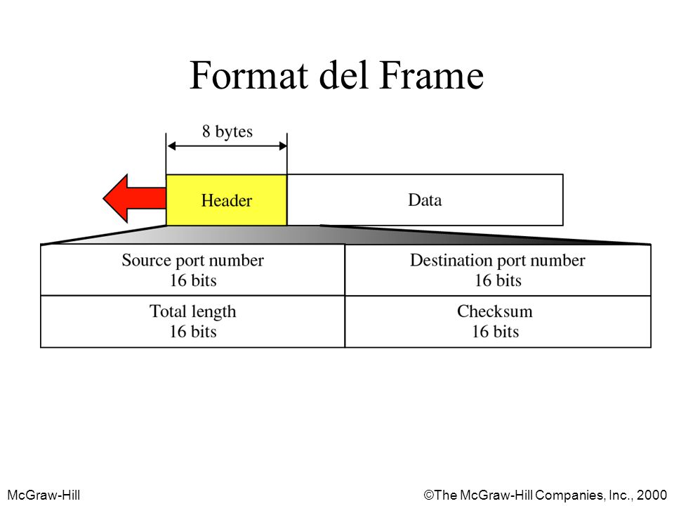 McGraw-Hill©The McGraw-Hill Companies, Inc., 2000 Format del Frame