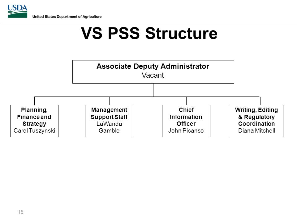 VS PSS Structure 18 Associate Deputy Administrator Vacant Writing, Editing & Regulatory Coordination Diana Mitchell Chief Information Officer John Picanso Management Support Staff LaWanda Gamble Planning, Finance and Strategy Carol Tuszynski