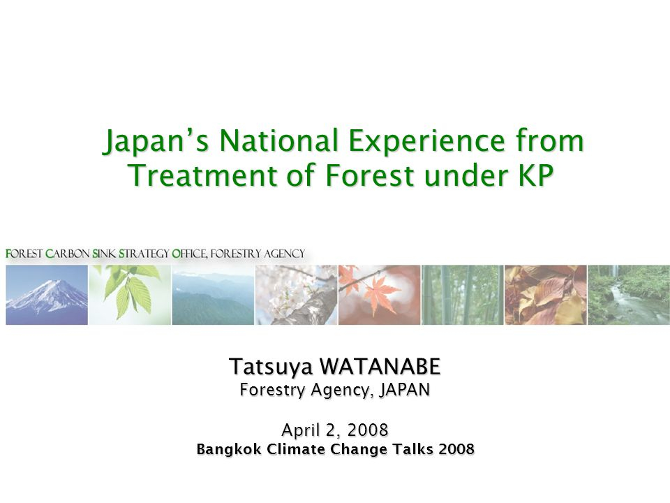Japan's National Experience from Treatment of Forest under KP Japan's National Experience from Treatment of Forest under KP Tatsuya WATANABE Forestry Agency, JAPAN April 2, 2008 Bangkok Climate Change Talks 2008