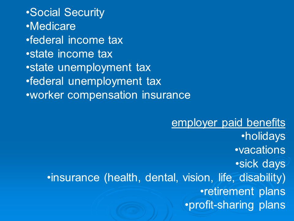 Social Security Medicare federal income tax state income tax state unemployment tax federal unemployment tax worker compensation insurance employer paid benefits holidays vacations sick days insurance (health, dental, vision, life, disability) retirement plans profit-sharing plans