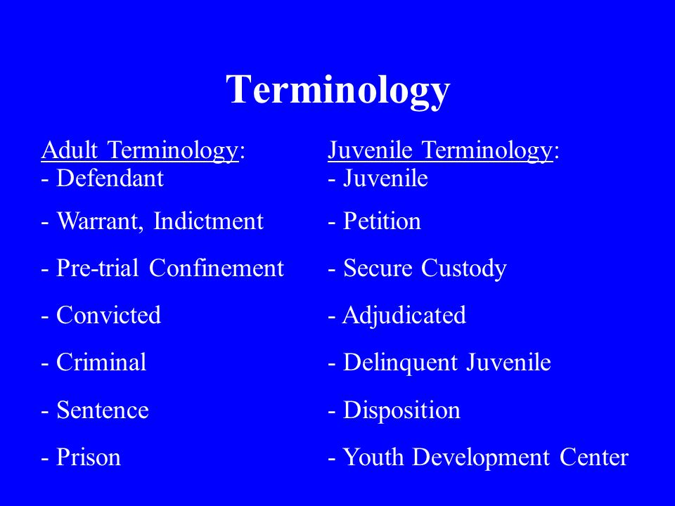 Terminology Juvenile Terminology: - Juvenile - Petition - Secure Custody - Adjudicated - Delinquent Juvenile - Disposition - Youth Development Center Adult Terminology: - Defendant - Warrant, Indictment - Pre-trial Confinement - Convicted - Criminal - Sentence - Prison