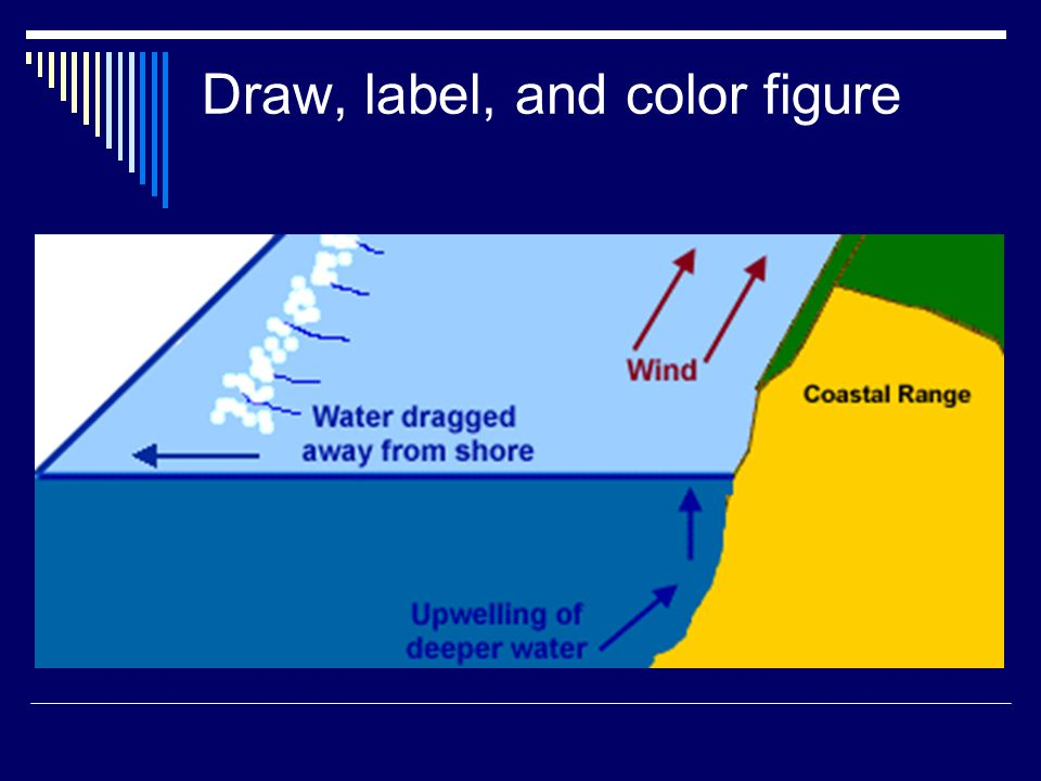 Draw, label, and color figure