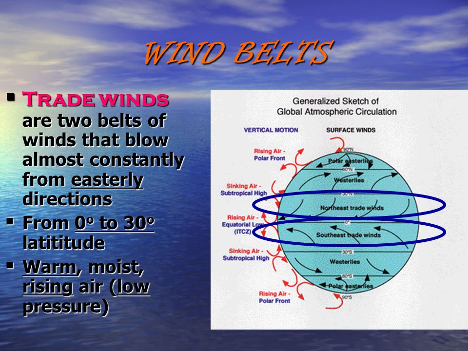 WIND BELTS  Trade winds are two belts of winds that blow almost constantly from easterly directions  From 0 o to 30 o latititude  Warm, moist, rising air (low pressure)
