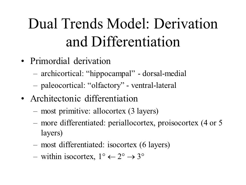 Dual Trends Model: Derivation and Differentiation Primordial derivation –archicortical: hippocampal - dorsal-medial –paleocortical: olfactory - ventral-lateral Architectonic differentiation –most primitive: allocortex (3 layers) –more differentiated: periallocortex, proisocortex (4 or 5 layers) –most differentiated: isocortex (6 layers) –within isocortex, 1°  2°  3°