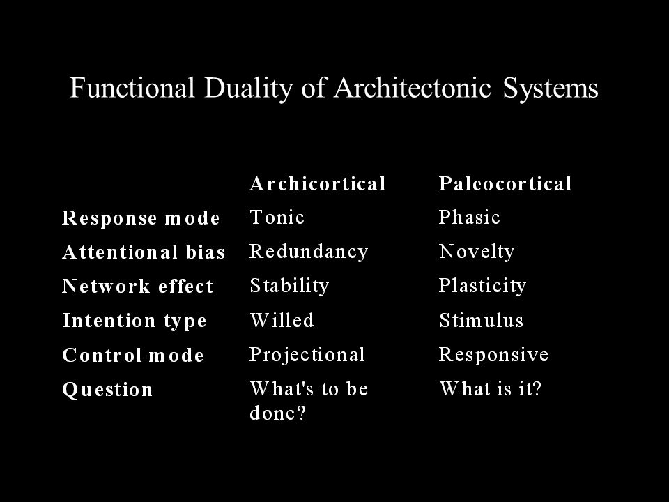 Functional Duality of Architectonic Systems