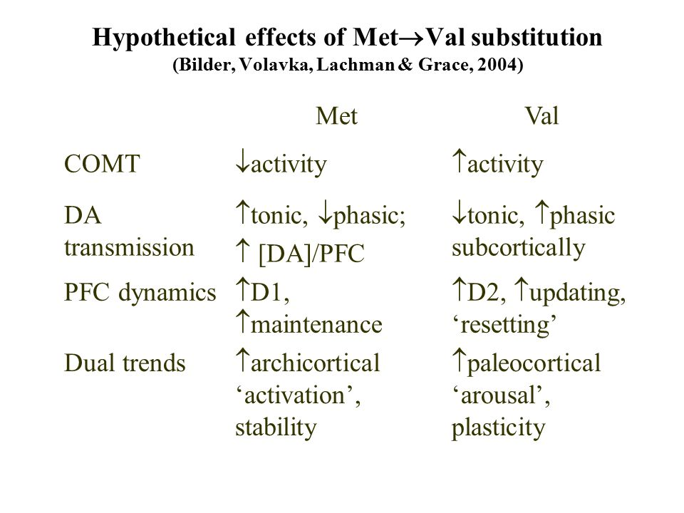 Hypothetical effects of Met  Val substitution (Bilder, Volavka, Lachman & Grace, 2004) MetVal COMT  activity  activity DA transmission  tonic,  phasic;  [DA]/PFC  tonic,  phasic subcortically PFC dynamics  D1,  maintenance  D2,  updating, 'resetting' Dual trends  archicortical 'activation', stability  paleocortical 'arousal', plasticity